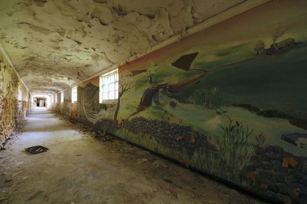 Severalls murals